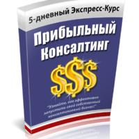 Экспресс-курс Прибыльный консалтинг