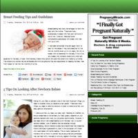 Шаблон блога о беременности